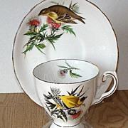 Tuscan Fine Bone China Audubon Series Goldfinch Pedestal Cup & Saucer