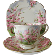 Vintage Royal Albert Blossom Time Trio