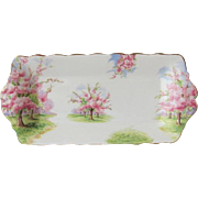 Early Royal Albert Blossom Time Small Sandwich Tray