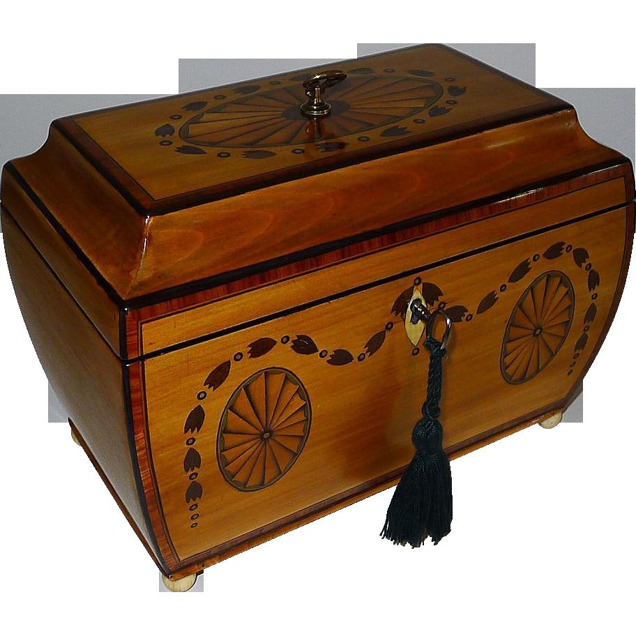 Fine George III Bombe Shaped Fruitwood Tea Caddy With Fan Paterae & Garland Inlay c.1810