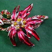 SALE Hand Painted Christmas POINSETTIA Gold  Plate & Red Enamel Brooch/Pin
