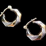 SALE ~10K GOLD ~ White & Yellow Gold ~ Hoop Lever Back Earrings