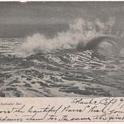 A September Sea Seascape Vintage Postcard