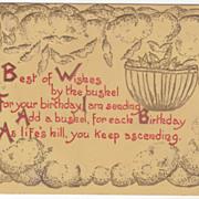 Greetings Vintage Postcard Birthday Best of Wishes Bushel of Wishes