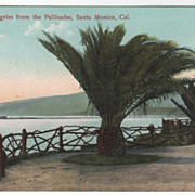 Port Los Angeles from Pallisades Santa Monica CA California Vintage Postcard