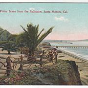 Winter Scene from the Pallisades Santa Monica CA California Vintage Postcard