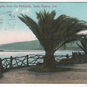 Port los Angeles from the Pallisades Santa Monica CA California Vintage Postcard