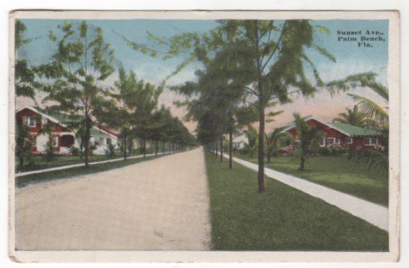 Sunset Avenue Palm Beach FL Florida Vintage Postcard