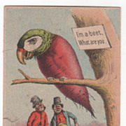 Crosman Brothers Seeds Rochester NY New York Victorian Trade Card