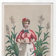 Gilbert S Graves' Corn Starch Buffalo NY New York Victorian Trade Card A