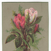 Central Hat & Bonnet Bleachery 478 Washington St Boston MA Victorian Trade Card