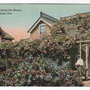 A Home among the Roses Portland OR Oregon Vintage Postcard