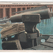 Harpoon Set for the Whale CA California Vintage Postcard