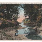 Brook Horse Shoe Canyon Starved Rock IL Illinois State Park Vintage Postcard