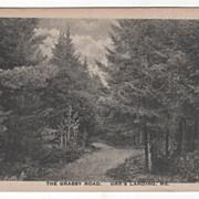 The Grassy Road Orr's Landing ME Maine Vintage Postcard