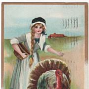 Pilgrim Maid Turkey Gobbler Vintage Thanksgiving Postcard