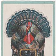 Very Large Turkey Gobbler Basket of Fruit Vintage Thanksgiving Postcard