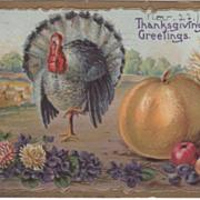 Turkey Gobbler Pile of Fruit Pile of Flowers Vintage Thanksgiving Postcard