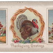 Turkey Gobbler in Wheat Arbor Country Scenes Vintage Thanksgiving Postcard