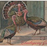 Two Turkey Hens with Wishbone Turkey Gobbler Vintage Thanksgiving Postcard