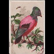Weber Piano Cluett & Sons Troy and Albany NY New York Vintage Trade Card