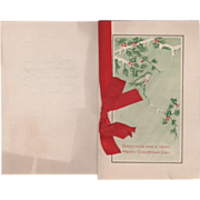 Robin on a Holly/Pine Branch Icicles Vintage Christmas New Year Card