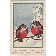 Whitney Two Robins on a Tree Twig in the Snow Vintage Christmas Postcard