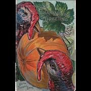 Two Large Turkey Gobbler Heads Very Large Pumpkin Vintage Thanksgiving Postcard