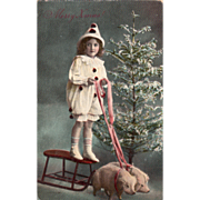 SOLD Pigs Pulling Sled with a Girl in a Clown Suit Tree Vintage Christmas Postcard