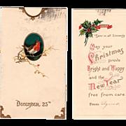 Card Insert Robin on a Twig in a Dark Oval Frame Vintage Christmas Postcard