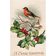 Silk Robin on a Limb Holly Sprig House in Background Vintage Christmas Postcard