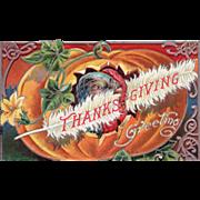 Turkey Gobbler inside a Very Large Pumpkin Vintage Thanksgiving Postcard
