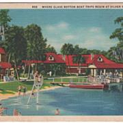 Where Glass Bottom Boat Trips Begin Silver Springs FL Florida Vintage Postcard
