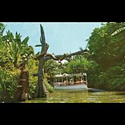 SOLD Jungle River Cruise Adventureland Disneyland Anaheim CA Vintage Postcard