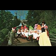 SOLD Snow White and the Seven Dwarfs Disneyland Anaheim CA California Vintage Postcard