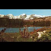 Sprague's Lake Rocky Mountain National Park CO Colorado Vintage Postcard