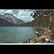 Mt Moran and Jenny Lake Grand Teton National Park WY Wyoming Vintage Postcard