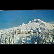 Timber Line Lodge Mount Hood OR Oregon Vintage Postcard