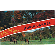 Two Views Greetings from ND North Dakota Vintage Postcard