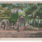Cathedral Shrine of the Transfiguration Shrine Mont Orkney Springs VA Virginia Postcard