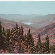Mount Mitchell and Reservoir Asheville NC North Carolina Vintage Postcard