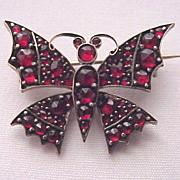 Victorian Bohemian Garnet & Gold Fill Butterfly Pin - Circa 1900