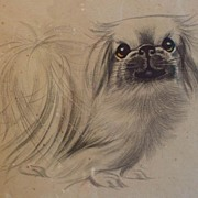 Wonderful Framed Pekingese Dog Pencil/Ink Drawing By Mercy Creed