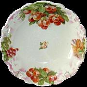 REDUCED Porcelain Fruit Bowl, Handpainted Cherries, GS Bavaria
