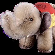 Tiny Steiff 75th Anniversary Baby Elephant w Commemorative Blanket All ID