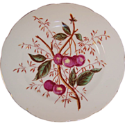 Antique Decorative Cherry Design Plate