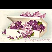 Ellen Clapsaddle Signed Easter Violets Postcard