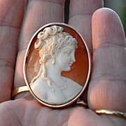 SALE Early 20th Century  Gold Shell Cameo Brooch