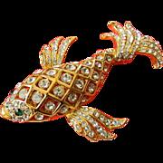 Fabulous -big fish Pin-Removal