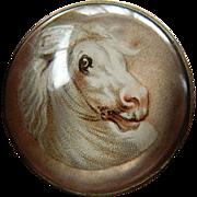 White stallion- glass domed- Horse bridal-Pin